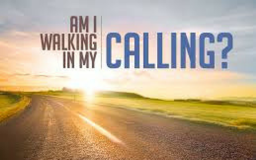 What is Your Calling in Life?